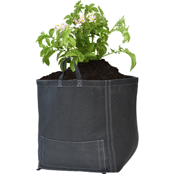 GeoPot Fabric Pots -  Black Potato Bag - GeoPot - Left Coast Wholesale