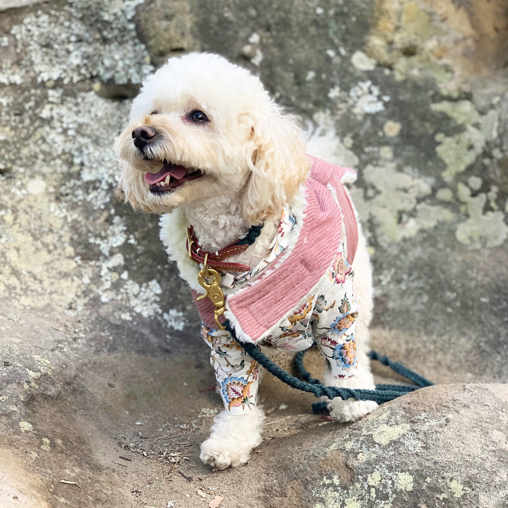 Corduroy Dog Coat - Dusty Pink