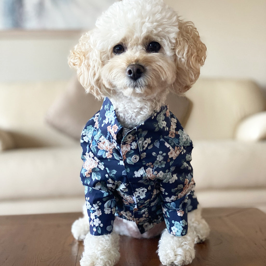 Liberty Dog Shirt - Floral