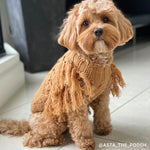 Merino Wool Fringe Knit Dog Sweater - Toffee