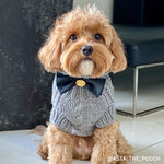 Merino Wool Cable Knit Dog Sweater - Charcoal