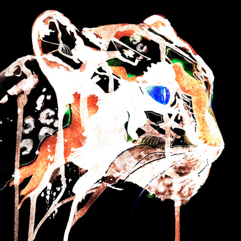 white panther paper print by Ana Kuni, signed