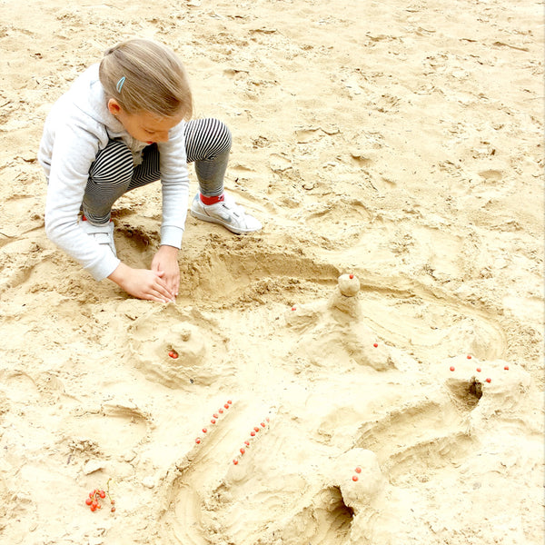 Sand kingdom with rowan berries