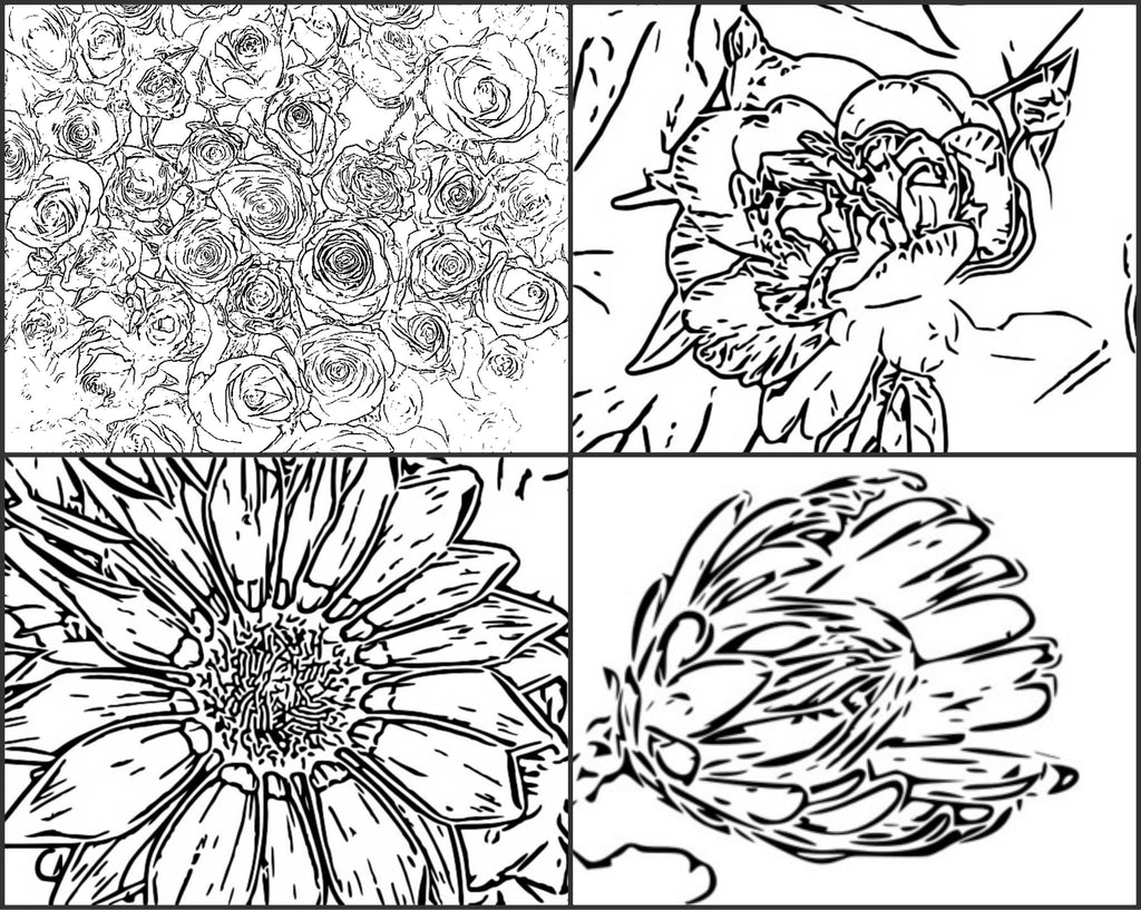 Color Me Calm 40 Beautiful Floral Patterns Coloring Book For Adults To Print PDF