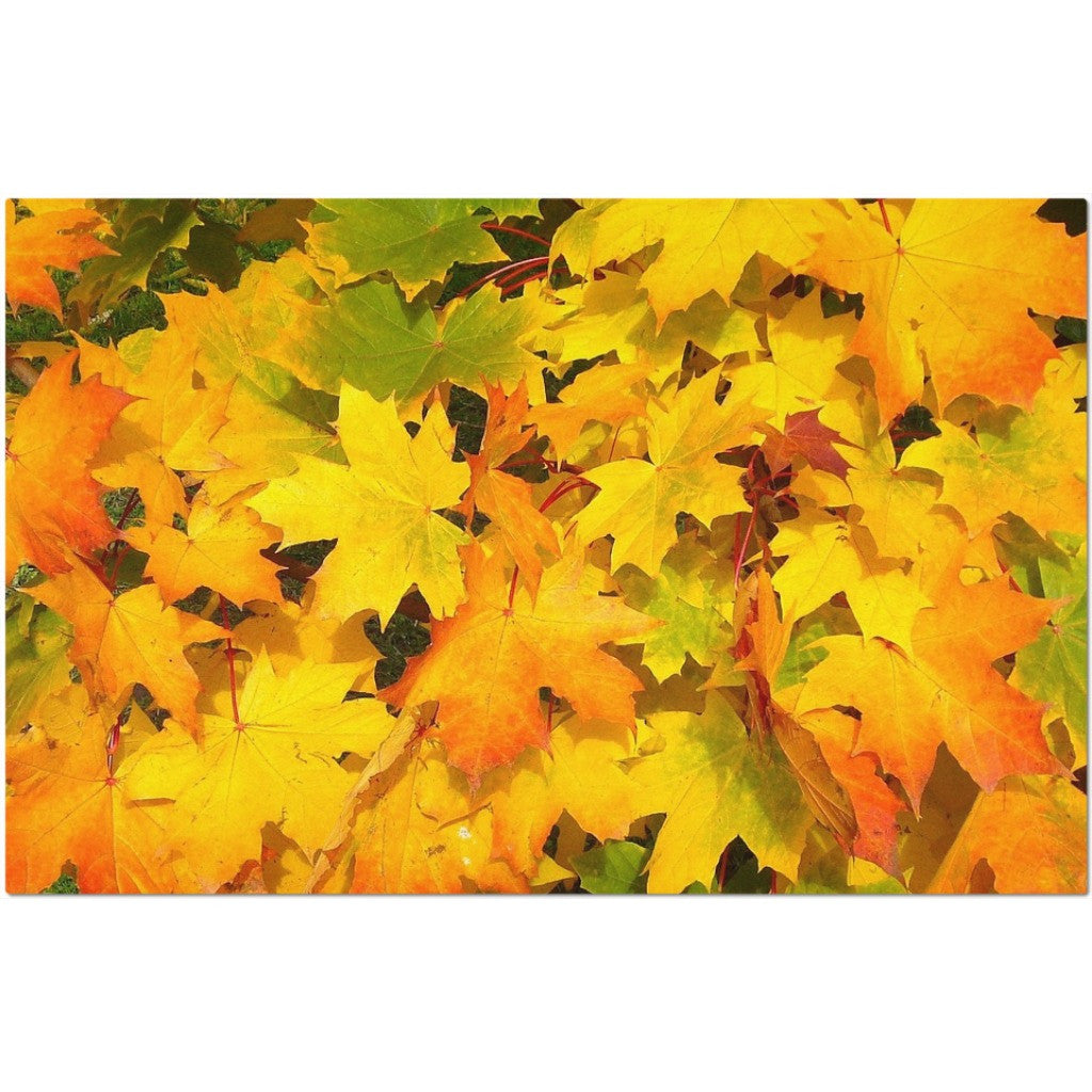 Laminated Autumn Leaves Placemat 11 x 17""