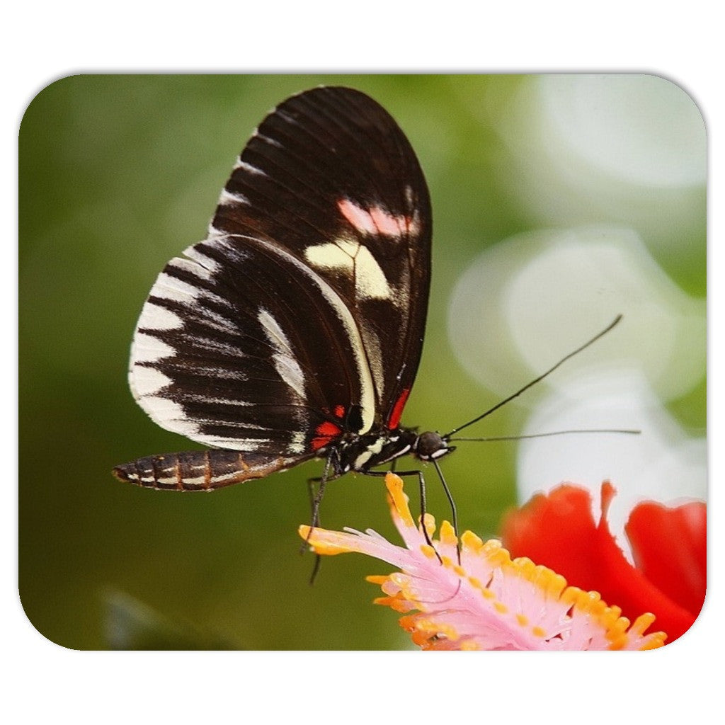 Butterfly and Flower Mousepad