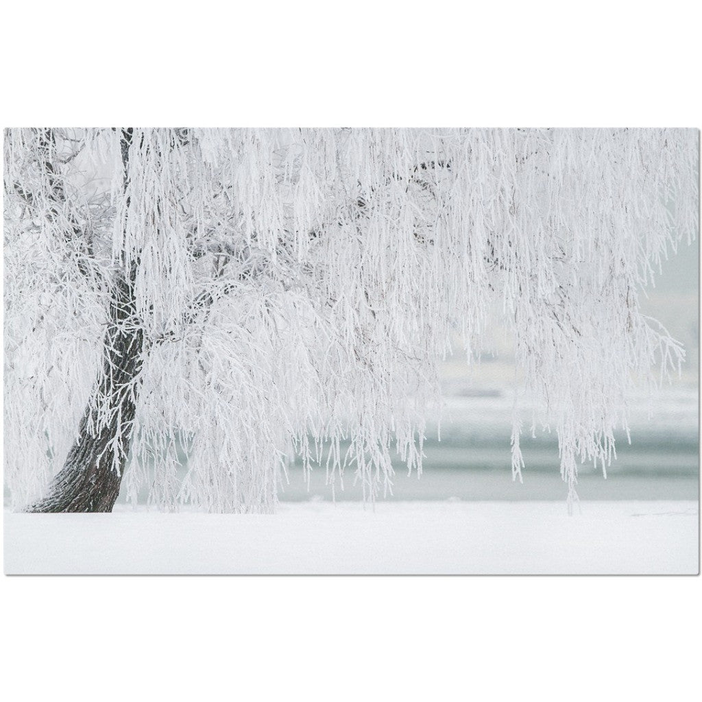 Laminated Winter Placemat 11 x 17""