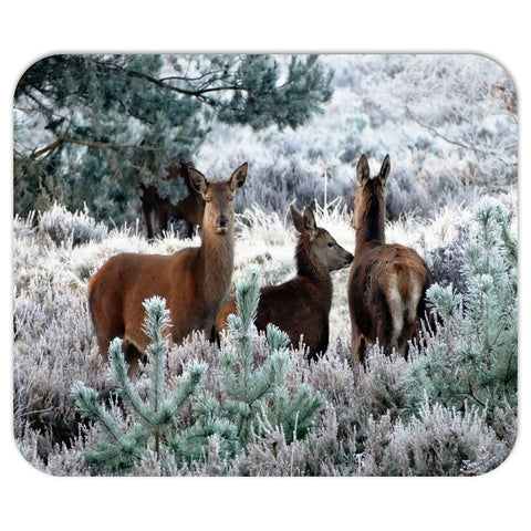 Deer in the Woods Mousepad