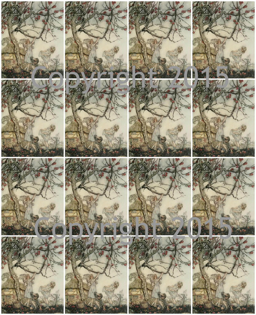 A Dish of Apples Images #2  by Aruthur Rackham Collage Sheet