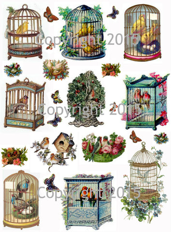 Vintage Images of Birds and Bird Cages Collage Sheet Instant download