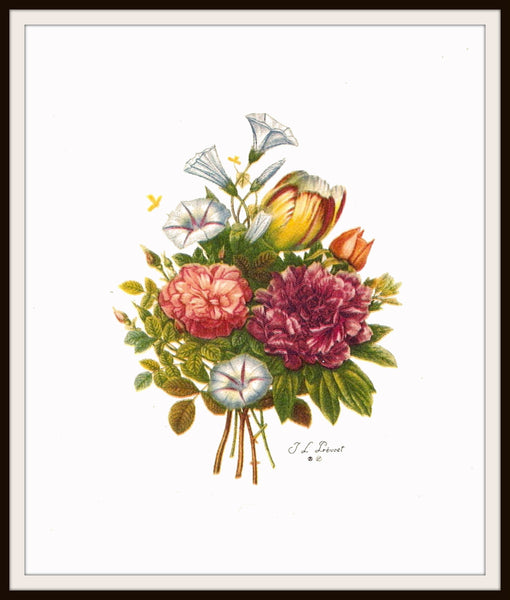 Set of 4 Jean-Louis Prévost Print Reproductions, Bouquets, Unframed 8 x 10""