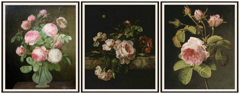 "et of 3 Floral Botanical Fine Art Print Roses Reproductions by Gerard van Spaendonck, Unframed 8 x 10"" or 11 x 14 Wall Decor"