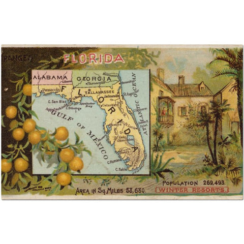Laminated Florida Map Placemat 11 x 17""