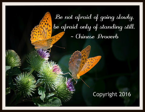 "Scripture Art Print  ""Be Not Afraid"", Wall Decor, 8 x 10"" Unframed Printed Art Image, Scripture Print, Motivational Quote"