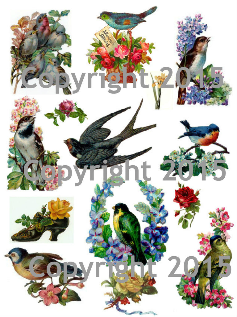 Vintage Images of Birds and Flowers #2 Collage Sheet
