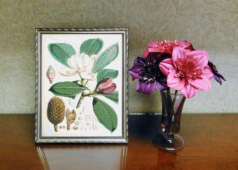 Vintage Botanical Flowers #4 Counted Cross Stitch Pattern INSTANT DOWNLOAD