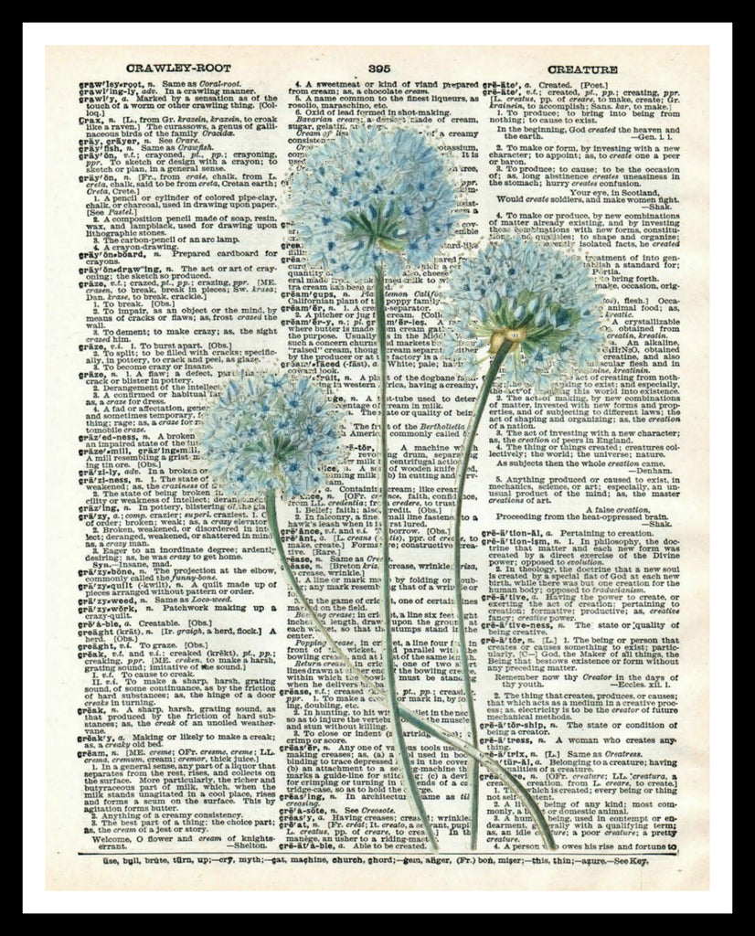 "Vintage Botanical Flowers Art Print Poster 8 x 10 or 11 x 14"" Unframed"