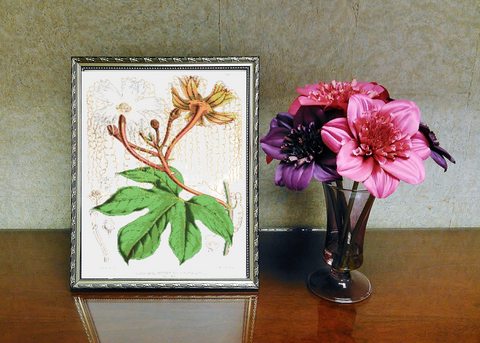 Vintage Botanical Flowers #2 Counted Cross Stitch Pattern INSTANT DOWNLOAD