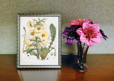 Vintage Botanical Flowers #6 Counted Cross Stitch Pattern INSTANT DOWNLOAD