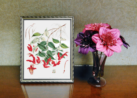 Vintage Botanical Flowers #7 Counted Cross Stitch Pattern INSTANT DOWNLOAD