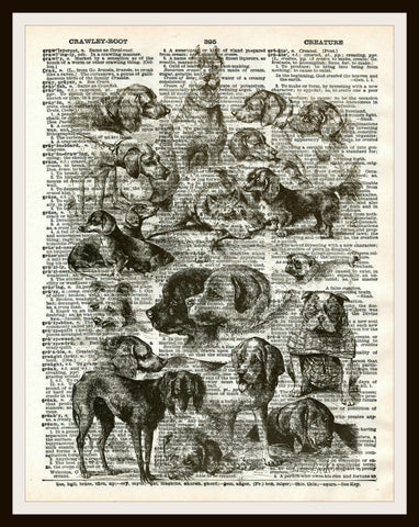 Dogs Art Print Reproduction Ephemera Dictionary Background Art Poster