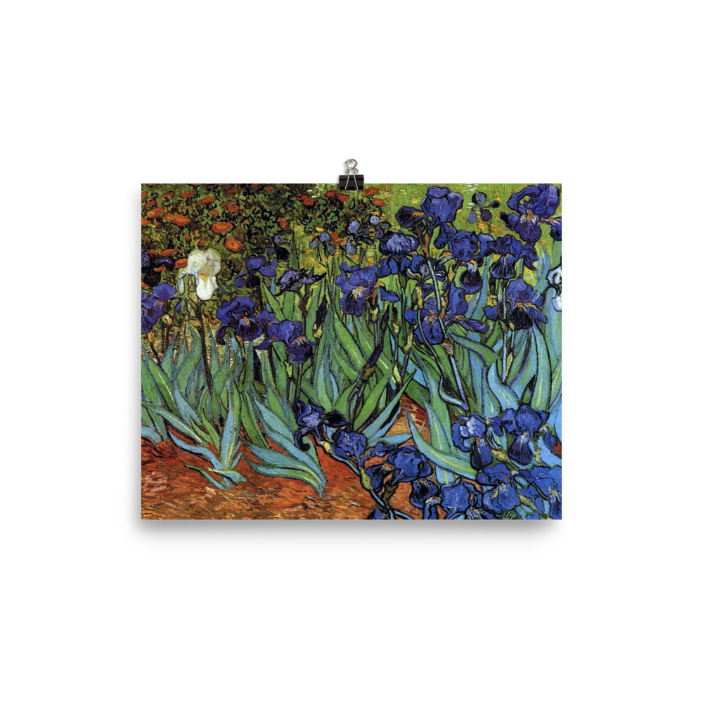 Vincent Van Gogh Art Irises Reproduction Poster