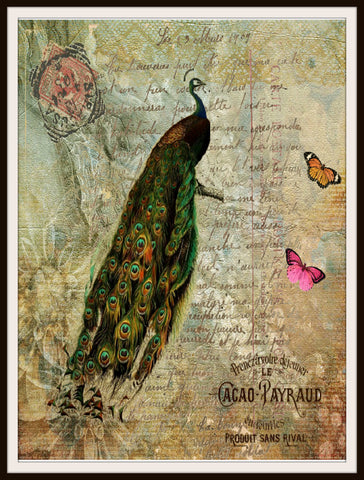 "Vintage Art Print Peacock on Ephemera , Print Wall Decor, 8.5 x 11"" Unframed Printed Art Image"