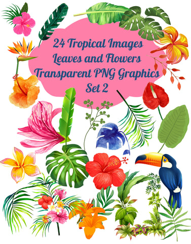 24 Tropical Flowers and Leaves Images Clip Art Transparent PNG Files, Set # 2 Tropical Graphics, PNG Graphics, Transparent Instant Download