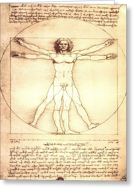 The Vitruvian Man By Leonardo Da Vinci - Greeting Card