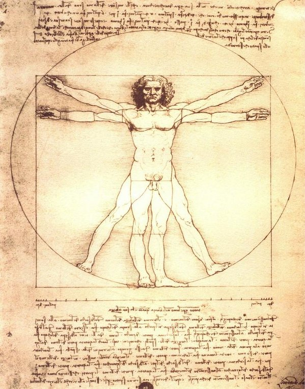 The Vitruvian Man By Leonardo Da Vinci - Art Print