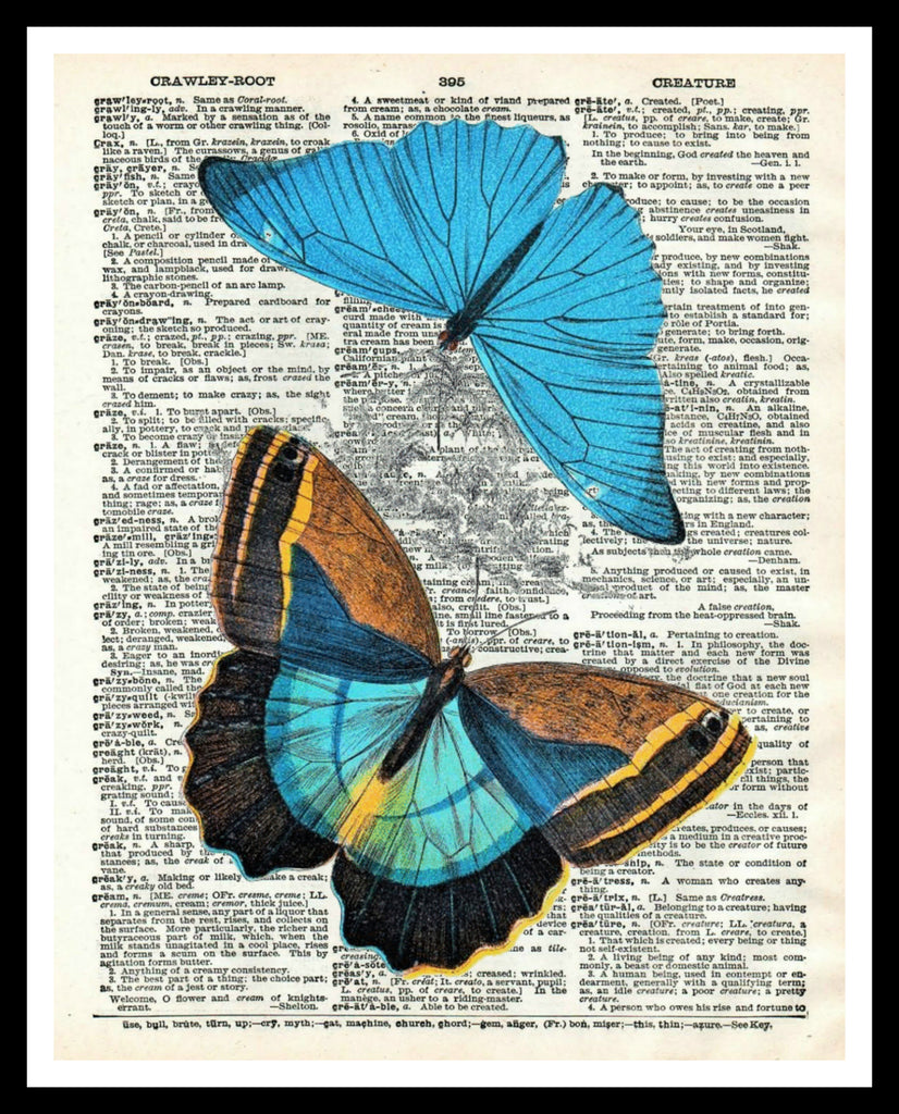 "Printed Vintage Butterfly Art Print Poster 8 x 10 or 11 x 14"" Unframed"