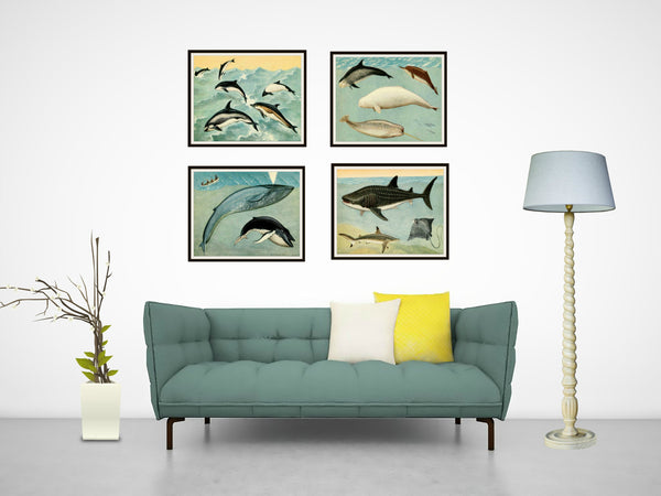 "Set of 4 Vintage Botanical Art Print Poster Reproductions ""Whales and Giant Fish"" Unframed 8 x 10"" Unframed"