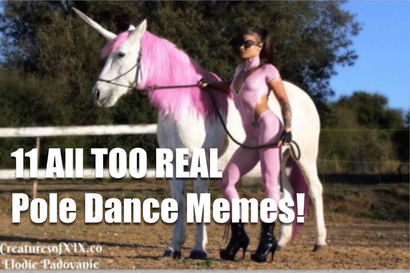 11 All too Real Pole Dance Memes!