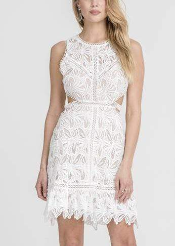 Lush Dress Harriet Lace Dress