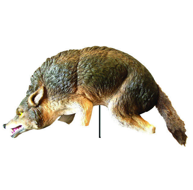 3D Coyote Decoy