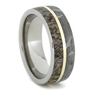 GIBEON METEORITE TITANIUM RING AND DINOSAUR BONE INLAYS-1551 - Cairo Men's Wedding Rings