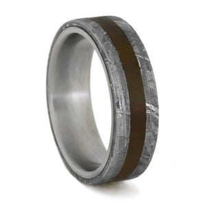 METEORITE AND PETRIFIED WOOD RING IN TITANIUM-1728 - Cairo Men's Wedding Rings