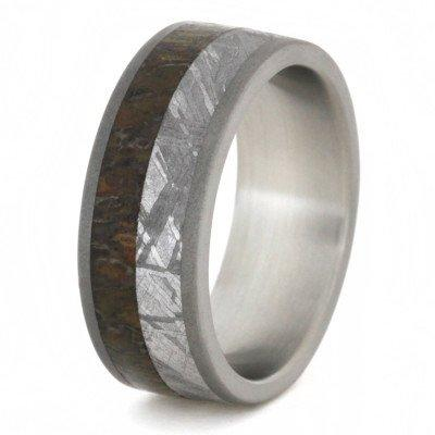 METEORITE DINOSAUR RING WITH SANDBLASTED TITANIUM-1764 - Cairo Men's Wedding Rings