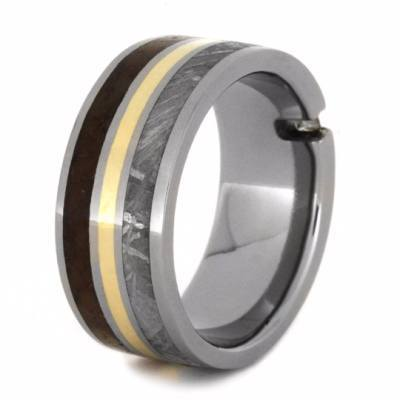 RING WITH TITANIUM METEORITE AND DINOSAUR BONE-2209 - Cairo Men's Wedding Rings