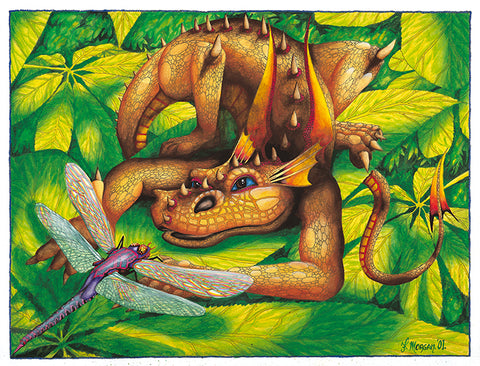 Orange Dragon Giclee Print by Francis Morgan - multymedia