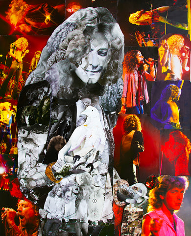 Robert Plant Dove Collage Poster - multymedia