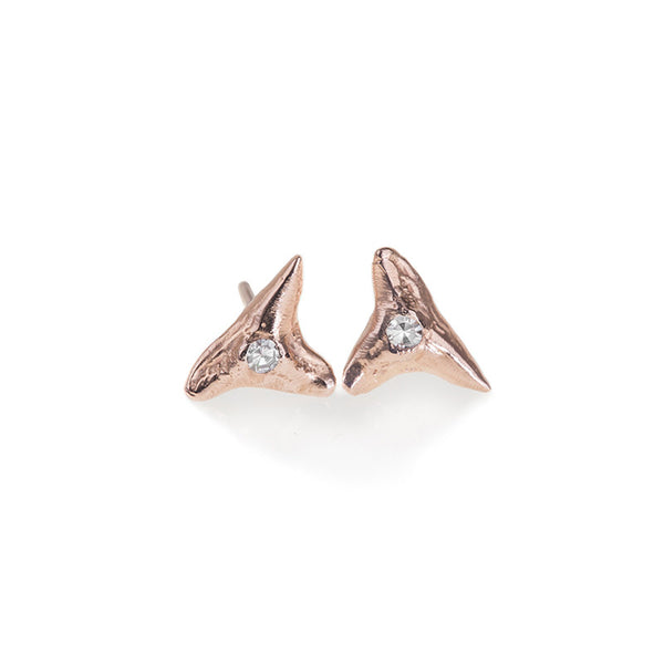shark tooth stud