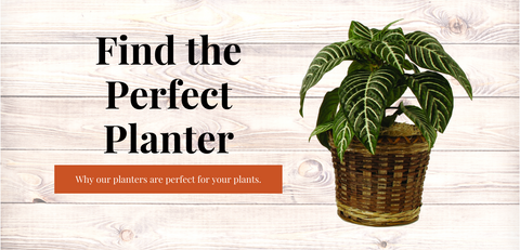 Why You Should Consider Our Planters For Your Indoor Plants