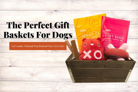 Gift Baskets For Man's Best Friend