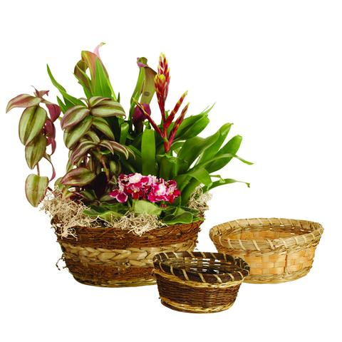 Bulk Baskets for Florists