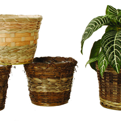 "7"" Rustic Planter Basket Assortment-Wald Imports"