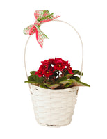 "4.75"" White Bamboo Basket With Handle-Wald Imports"