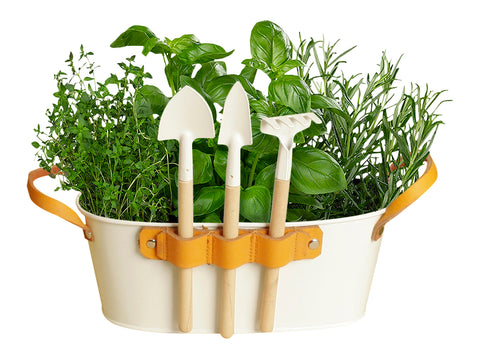 "9"" White Oval Planter with Garden Tools-Wald Imports"