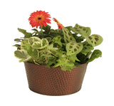 "10.5"" Copper Tint Hammered Metal Bowl Planter Flower Pot Gift Basket-Wald Imports"