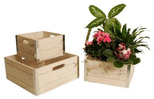 Set of 3 Square Crates w/ Metal Trim-Wald Imports